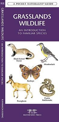 Grasslands Wildlife By Kavanagh, James/ Leung, Raymond (ILT)